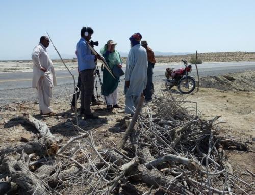 The Baluchistan shoot