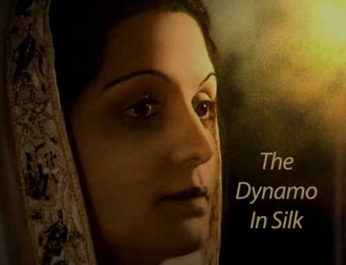The Dynamo In Silk